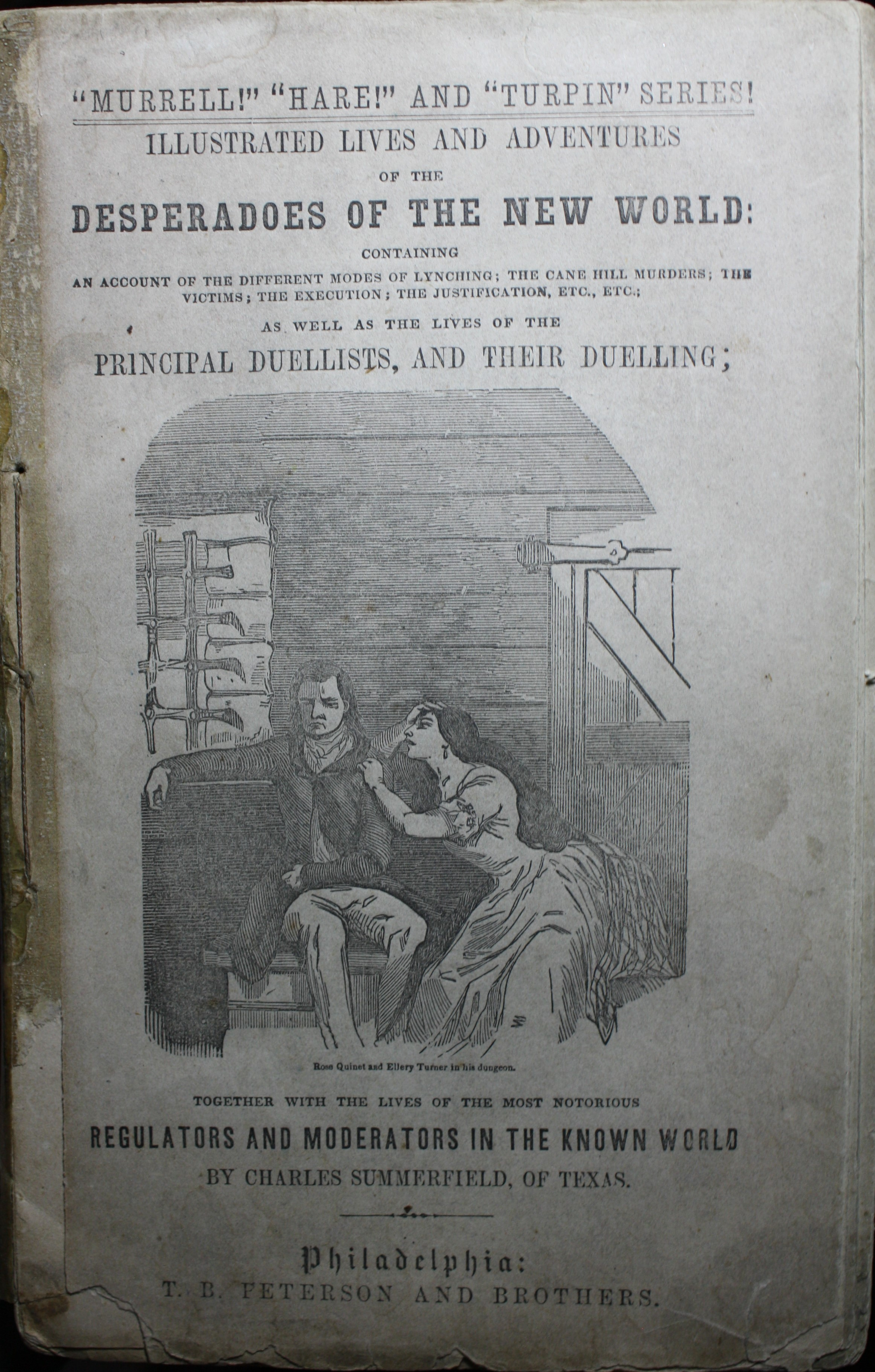 Image for Illustrated Lives and Adventures of the Desperadoes of the New World, Containing An Account of the Different Modes of Lynching, The Cane Hill Murders, The Victims, the Execution, the   Justification, Etc. Etc. As Well as the Lives of the Pri