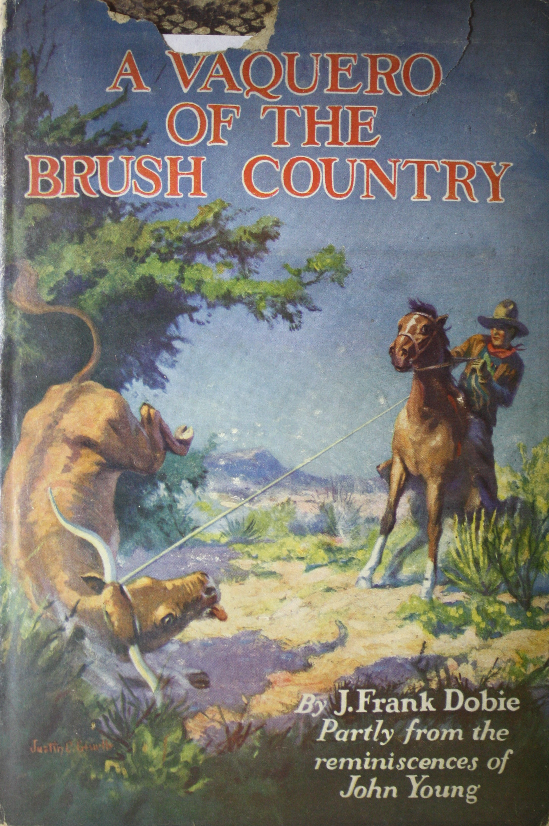 Image for A Vaquero of the Brush Country